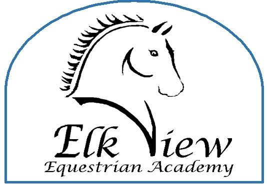 Autism and Therapeutic Horseback Riding
