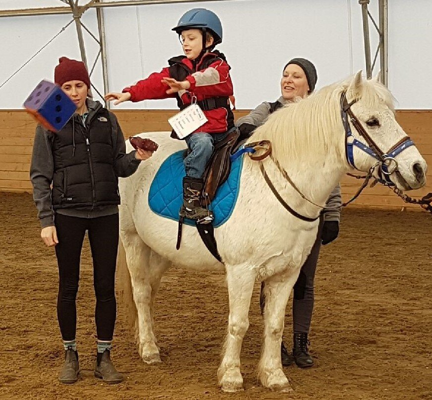 Therapeutic Riding: Understanding Autism and other Neurdevelopmental Disorders... Planning for Progress