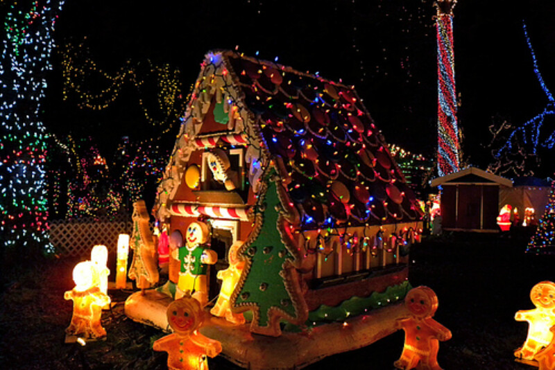 Canucks Autism Network: Stanley Park Bright Nights Train (Family Experience)
